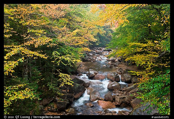 Cascades of the Pemigewasset River in fall, Franconia Notch State Park. New Hampshire, USA (color)