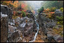 Silver Cascade in the fall, White Mountain National Forest. New Hampshire, USA ( color)