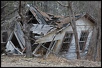 Ruined house in forest. New Hampshire, USA ( color)