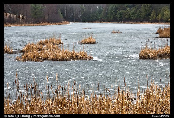 Frozen pond. Walpole, New Hampshire, USA (color)