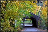 Covered bridge in autumn, Bath. New Hampshire, USA ( color)