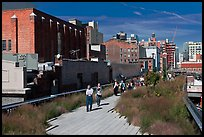 People strolling the High Line. NYC, New York, USA ( color)