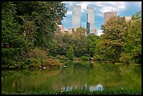 Pond and skyscrappers, Central Park. NYC, New York, USA (color)