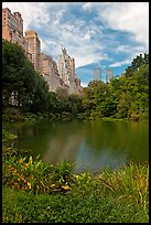 Central Park pond and nearby buildings. NYC, New York, USA ( color)
