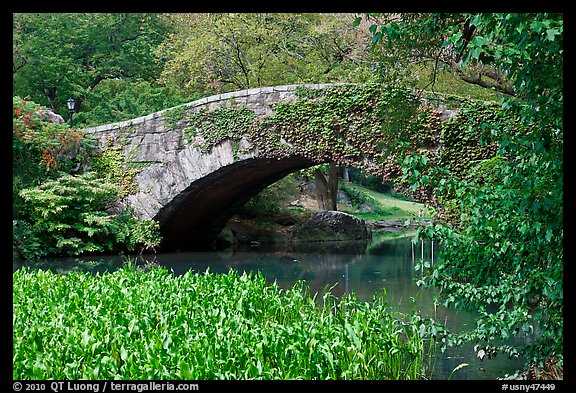 Stone bridge, Central Park. NYC, New York, USA (color)
