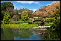 Pond and stone bridge, Central Park. NYC, New York, USA (color)