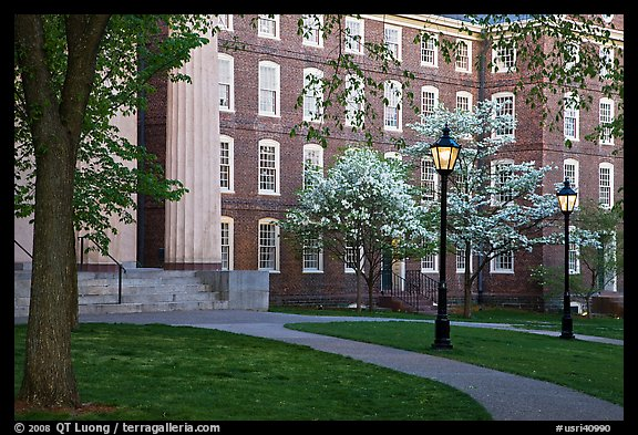 Columns, brick buildings, flowering dogwoods, and gas lamps, Brown University. Providence, Rhode Island, USA