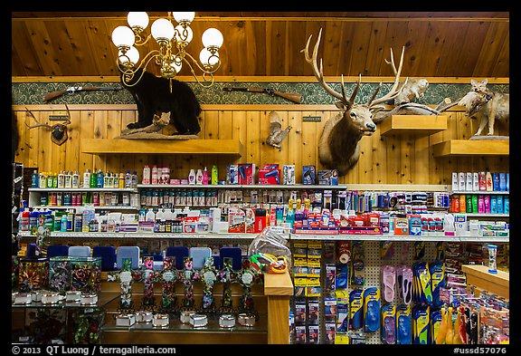 Dakota city drug store