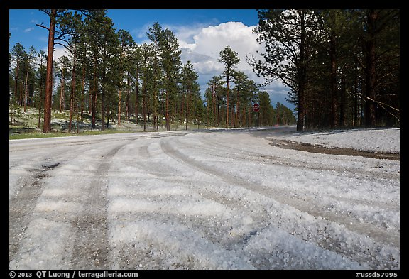 Highway covered with hailstones, Black Hills National Forest. Black Hills, South Dakota, USA (color)