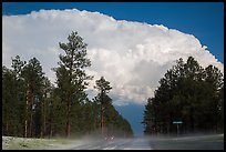 Cumulonimbus cloud above roadway, Black Hills National Forest. Black Hills, South Dakota, USA (color)