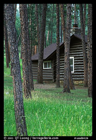 Cabins in Custer State Park. South Dakota, USA (color)