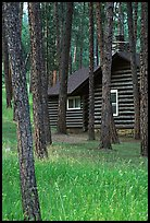 Cabins in Custer State Park. Black Hills, South Dakota, USA