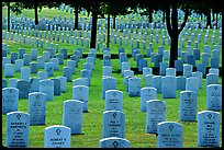 Rows of tombs, Black Hills National Cemetery. South Dakota, USA (color)