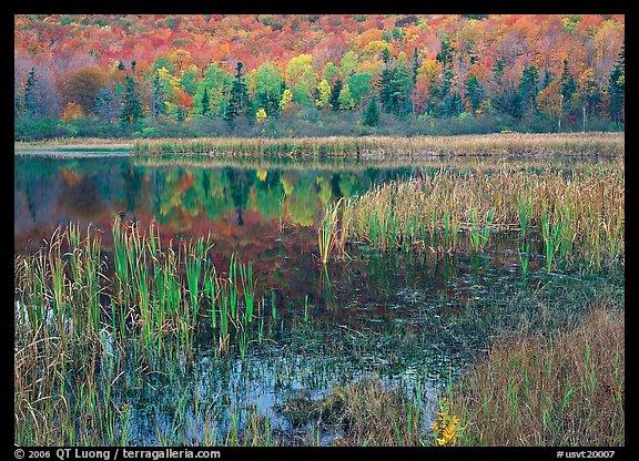 usvt20007 - ~! Vermont Pics !~