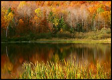 Hill in fall colors reflected in a pond. Vermont, New England, USA