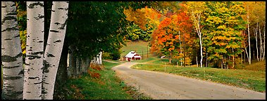 Pastoral landscape in autumn with road. Vermont, New England, USA (Panoramic color)