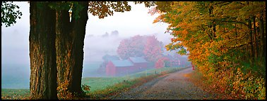 Rural view with road and farm in autumn fog. Vermont, New England, USA (Panoramic color)