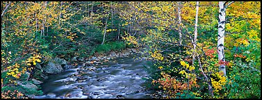 Autumn forest landscape with stream. Vermont, New England, USA (Panoramic color)