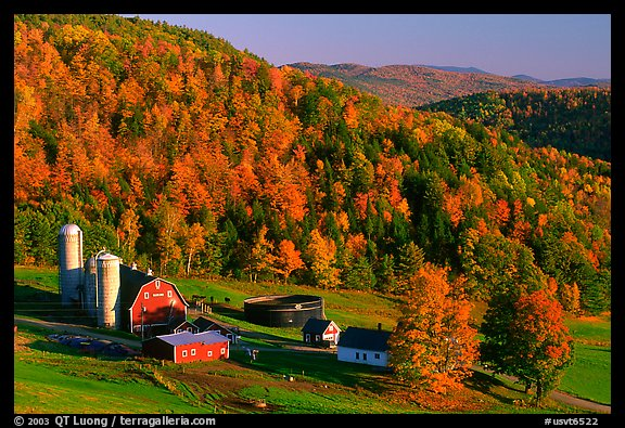 Fall Foliage New England Wallpaper http://www.terragalleria.com/america/north-east/vermont/picture.usvt6522.html