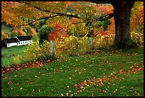Peacham. Vermont, New England, USA (color)