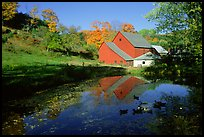 Pond and Sherbourne Farm in Hewettville. Vermont, New England, USA ( color)