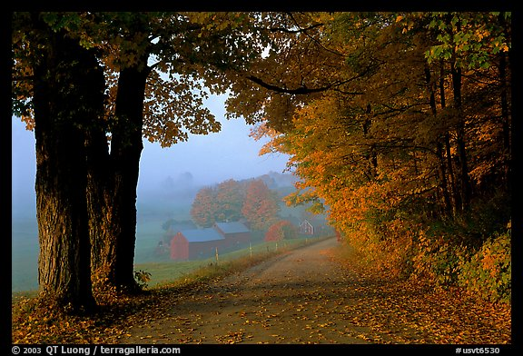 Jenne Farm, foggy morning. Vermont, New England, USA