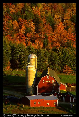 Farm and silos surrounded by hills in autumn  foliage. Vermont, New England, USA