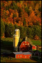 Farm and silos surrounded by hills in autumn  foliage. Vermont, New England, USA ( color)
