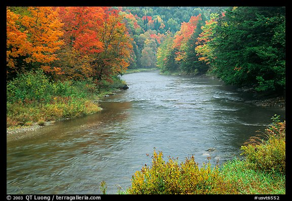 River with trees in autumn color. Vermont, New England, USA (color)