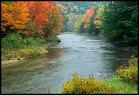 River with trees in autumn color. Vermont, New England, USA