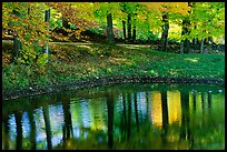 Pond with tree reflections. Vermont, New England, USA (color)