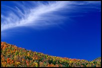 Hills and cloud, Green Mountains. Vermont, New England, USA ( color)