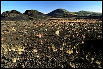 Lava field, Craters of the Moon National Monument. Idaho, USA (color)