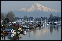 Houseboats on North Portland Harbor and snow-covered Mt Hood. Portland, Oregon, USA (color)