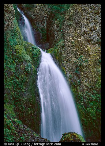 Waterfall, Columbia River Gorge. Columbia River Gorge, Oregon, USA (color)