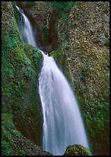 Waterfall, Columbia River Gorge. Columbia River Gorge, Oregon, USA ( color)