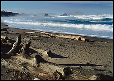 Logs on beach and surf near Bandon. Bandon, Oregon, USA