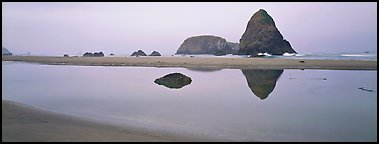 Sea stacks reflected in tidepool. Oregon, USA