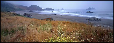 Foggy seascape. Oregon, USA (Panoramic color)