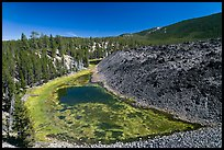 Pond at the edge of lava flow. Newberry Volcanic National Monument, Oregon, USA