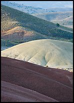 Weathered ash hummocks and sagebrush-covered slopes. John Day Fossils Bed National Monument, Oregon, USA ( color)