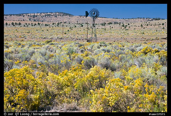 Picture Photo Plateaus Windmill And Sagebrush Oregon Usa