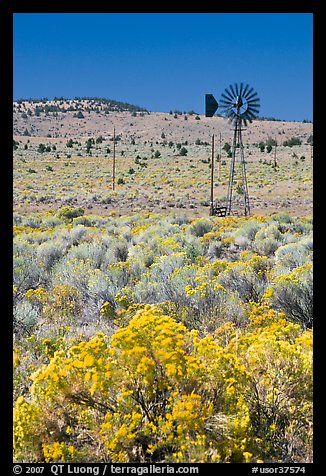 Sagebrush slopes and windmill. Oregon, USA