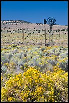 Sagebrush slopes and windmill. Oregon, USA (color)
