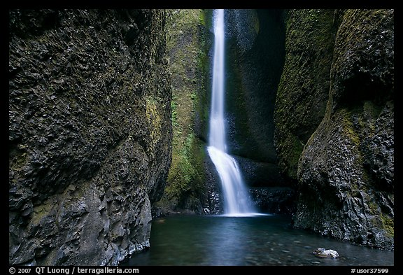 Oneonta Falls. Columbia River Gorge, Oregon, USA