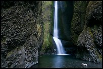 Oneonta Falls. Columbia River Gorge, Oregon, USA (color)