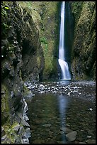 Oneonta Falls at the end of Oneonta Gorge. Columbia River Gorge, Oregon, USA (color)