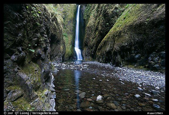 Oneonta Gorge and falls. Columbia River Gorge, Oregon, USA (color)
