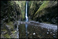 Oneonta Gorge and falls. Columbia River Gorge, Oregon, USA