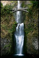 Lower Multnomah Falls and Benson Bridge. Columbia River Gorge, Oregon, USA